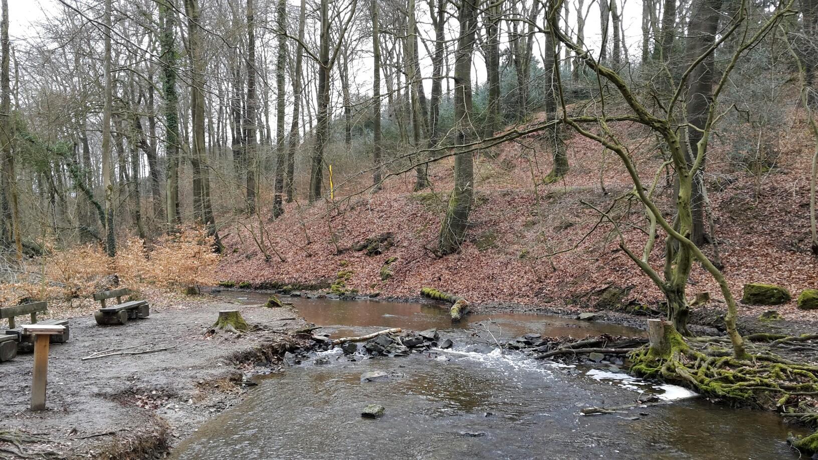 Rinderbach